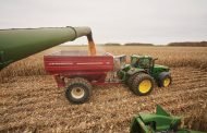 HAPPY HARVEST IN WESTERN ONTARIO: Good quality, great prices, early finish