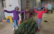WESTERN ONTARIO: Locals donate Christmas trees and gifts for stuck Trinidad migrant workers