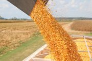 Ontario increases support to AgriStability and urges federal gov't to do same