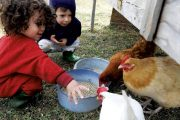 Farmers qualify for emergency child-care during remote learning