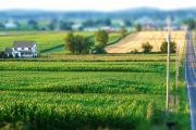 Like local food? Protect farmland first says OFA