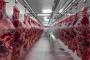 China's pork output surges 32 per cent