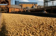Forward contracting is up amid sky-high grain prices; don't be tempted to chase the highs