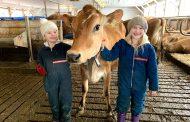 Ontario dairy farmers head to Nova Scotia for cheaper farmland to launch creamery