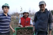 Couple left white-collar jobs in China to become farmers in Ottawa area