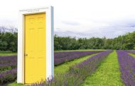 Largest lavender farm in Ontario launches 'Beyond the Yellow Door' membership campaign