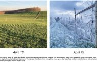 Ice and sunshine: April exits with contrasting weather …