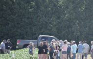 Summer crop conferences online-only, in-person events still considered dangerous