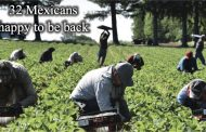 Quarantine hell: Dentz Orchards hires 32 Mexican workers and gets pounded with paperwork; has to pay two-week quarantine hotel bill