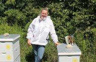Corporate banker becomes honeybee rescuer