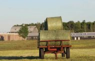 Hay prices have been strong for a while, not surging like other crops