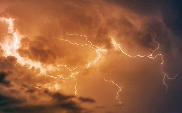 29 cattle die in lightning strike south of Ottawa