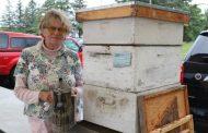 Ontario beekeeper 'still a teacher at heart'