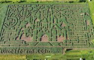 7-acre Disney maze sees visitor rebound in Vankleek Hill