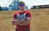 Canola yield average, price doubles but does not attract growers
