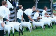 Seaforth Fair goes ahead — includes 4-H shows and fireworks