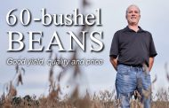 Farmers see 60 bushels per acre of soybeans or more